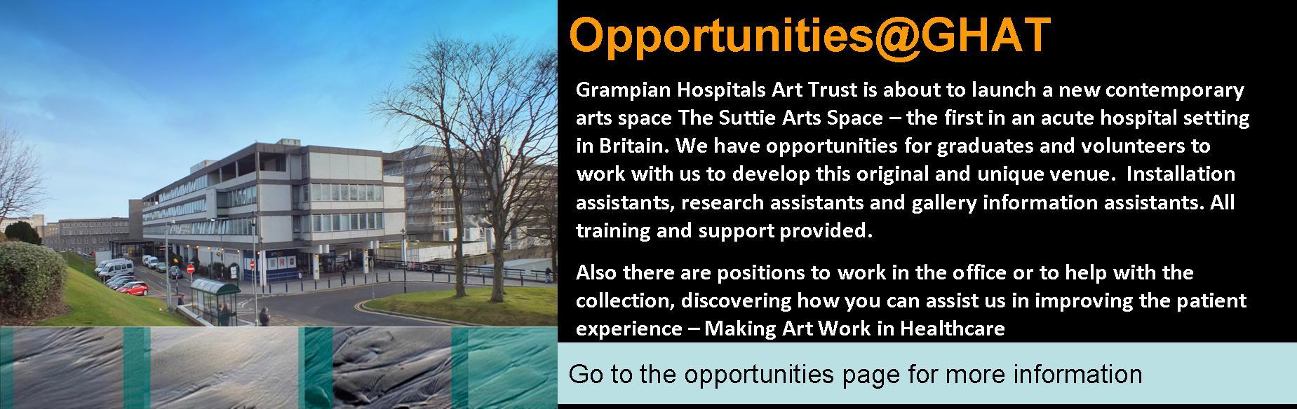 Graduate and volunteer opportunities