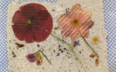 Papermaking with Donna Briggs
